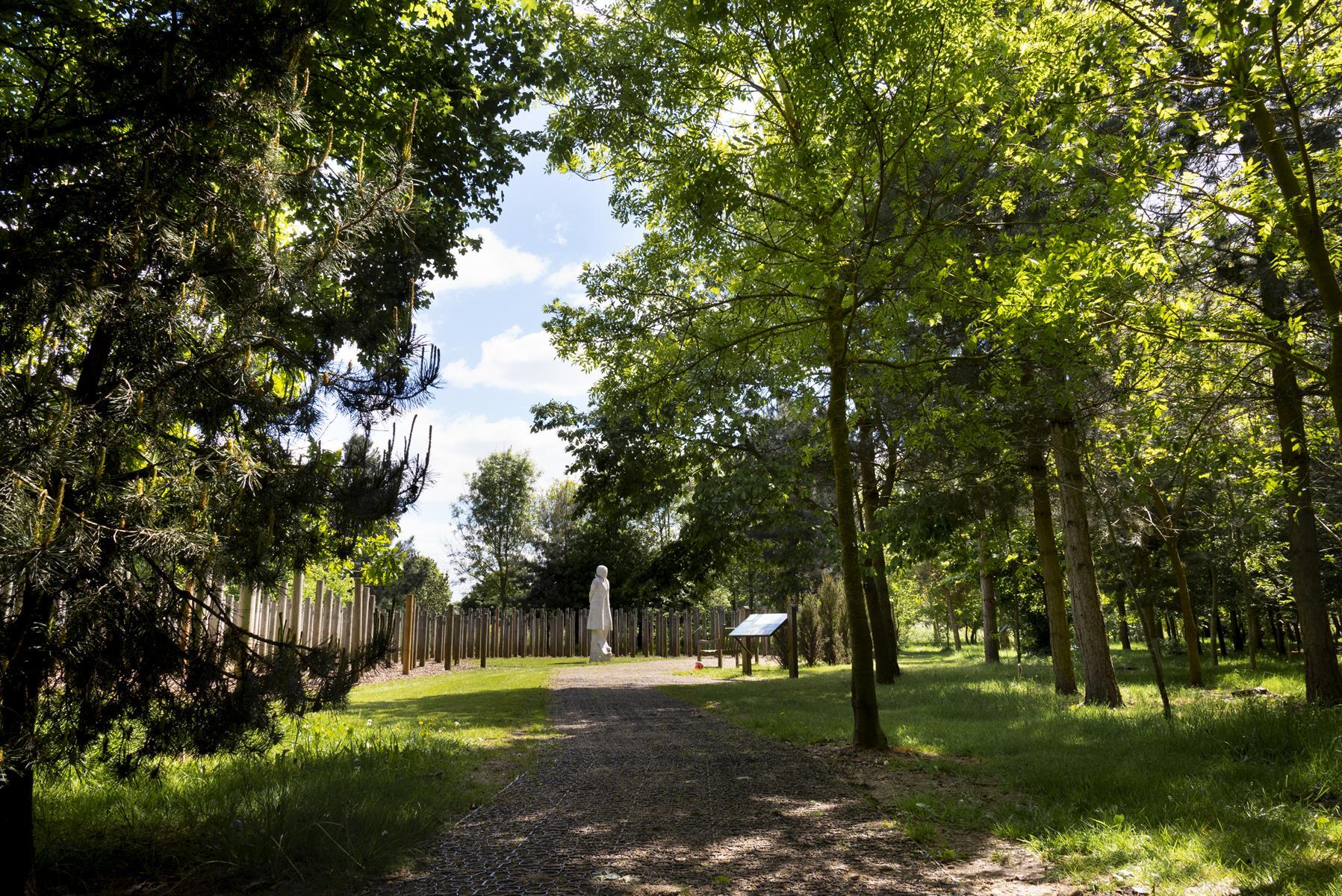 Show at Dawn Memorial through the trees